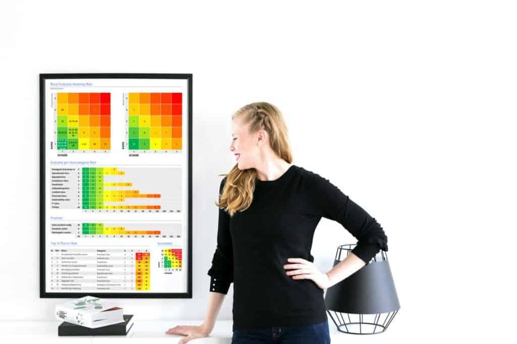 Risk Control Self Assessment Template (RCSA)